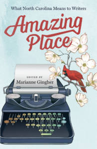 Cover of Amazing Place|Marianne Gingher