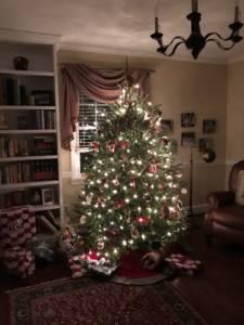 Image of lit Christmas Tree