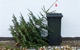 Image of Christmas tree with Garbage Can