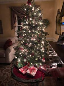 Image of decorated Christmas Tree with lights